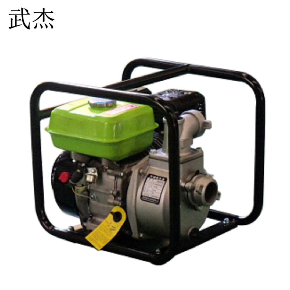 汽油水泵/2寸/220V/25L